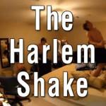 Garip Demişken: Harlem Shake