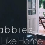 YENİ ŞARKI: THE FLABBIES – FEELS LIKE HOME